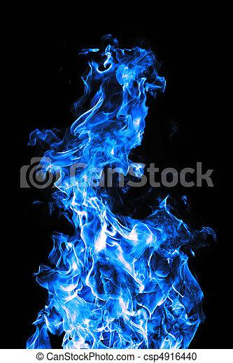 כחול, מושלם, פטר - csp4916440