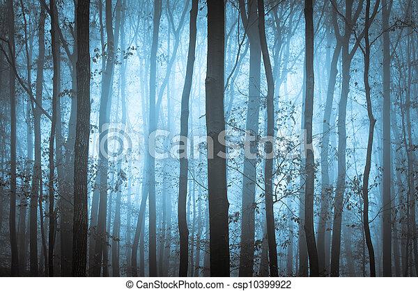 כחול, מפחיד, עצים, חושך, ערפל, ל - csp10399922