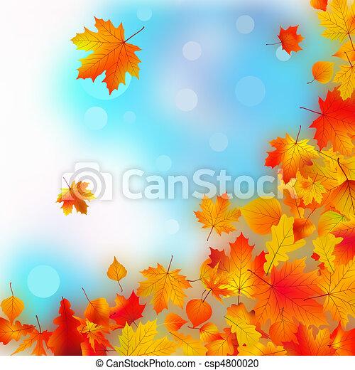 לפול, leaves., נפול - csp4800020