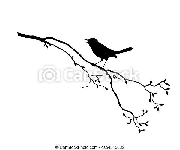 עץ, וקטור, צללית, צפור, ענף - csp4515632