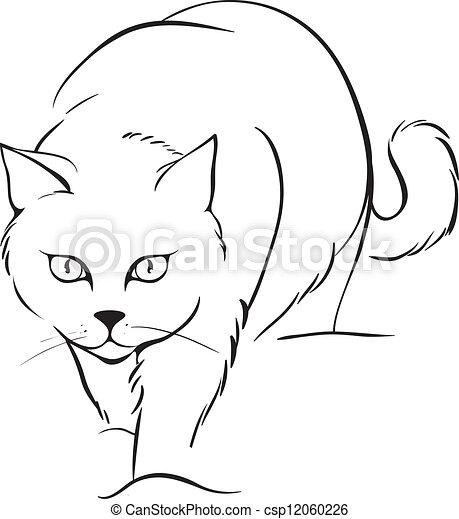 תאר, חתול - csp12060226